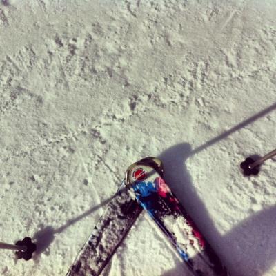 Ski in Alpes