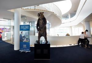 & Bear