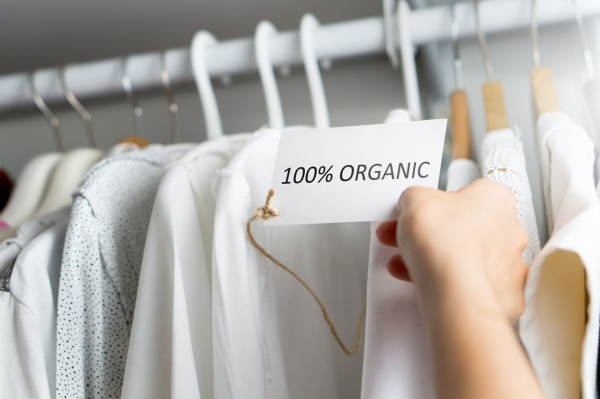 T-shirt made of 100% and hundred percent organic materials. Customer with responsible and nature and eco friendly values looking for clothes in store or shop. Holding label and price tag with text.