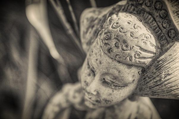 buddha-ayurveda